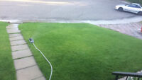 Grass mowing services