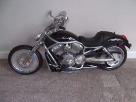 New Bright - Harley Davidson - Bike only, (no controls)