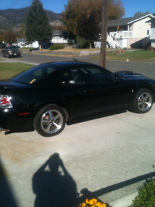 2003 Ford Mustang Mach 1 Coupe (2 door)
