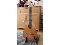 Raimundo 118 Spanish Made Classical Guitar & Gig Bag