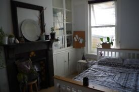Lovely double room in friendly and sociable house share off Gloucester Road