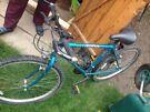 3x Mountain  bikes