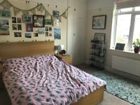 Large double room in two bed flat share