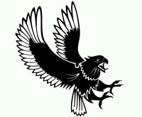 Black Eagle General  Contracting Ltd
