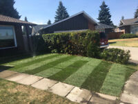 Sod Installation - Recommended Installer  - Free Quotations