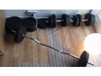 Barbell and Dumbbells plus weights