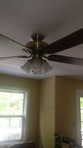 Various ceiling fans - all working great