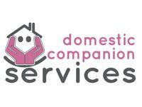 Domestic Companion - Cleaning and Companionship £8 per hour 25p Mileage