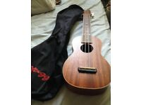 Beautiful Fender Ukulele including a ukulele bag! Originally £150!!