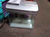 Aqua one 22 litre fish tank £20