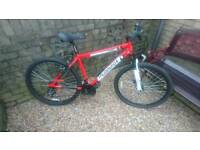 Muddyfox Rebel Bike (Like New)