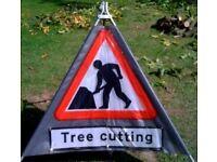 Tree surgeon needed