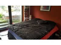 Double bedroom to let / share 2 bedroom house,