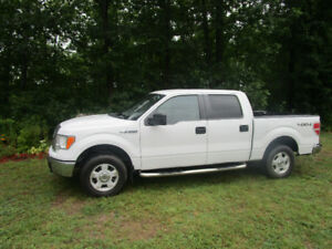 """2010 Ford F-150 SuperCrew Pickup Truck """"WINTERS IN FLORIDA"""""""