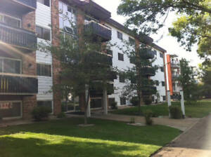 2 Bedroom downtown condo for rent available as soon as Aug. 15th