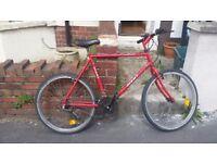 Mens mountain bike 53cm frame