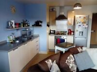 A large one bedroom flat to rent in a central location.