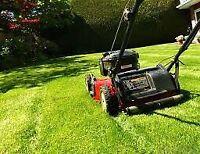 Grass cutting yard maintenance