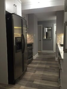 2 bedroom apartment partially furnished