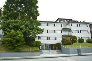 1 Bdrm available at 315 Agnes Street, New Westminster