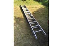 Ladders - 3metre