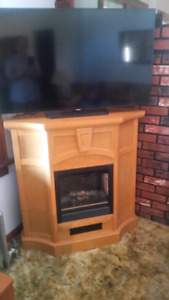 Fireplace -Electric