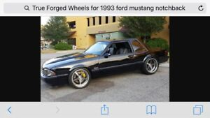 Wanted: 87-93 Ford Mustang 5.0 Notchback