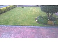 Nunthorpe grass cutting service small lawns strimmed and cut from £10
