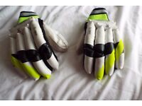 Cricket gloves
