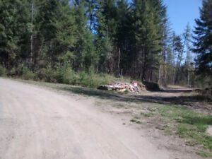 Scenic 20 acres for sale near Clearwater, B.C.