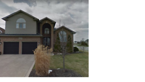 Fantastic house for rent in south Windsor 4 bds up & 2 down