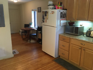 3 Bedroom apartment downtown