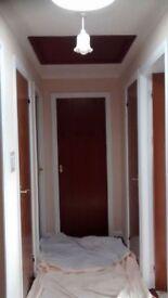 Sapelle doors.good condition
