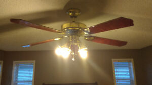 5 blade ceiling fan with 5 lights in great condition