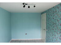 Plastering/Painting and decorating/gypsum boarding/laminate floors/house renovation