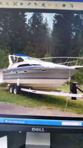 1989 Bayliner Sunbridge Cruiser