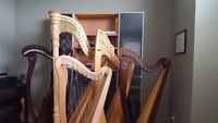 Harp Lessons - free first lesson (rentals available)