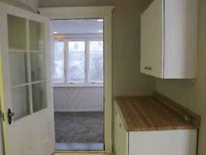 Apartment for Rent-Recently Renovated/Spacious/Bright