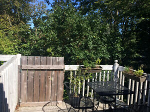 3 bdrm flat near Hydrostone - available Aug/Sept 1st.