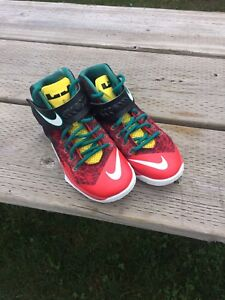 LeBron James Soldier 8's Great Basketball Shoe