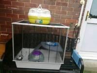 Large Rat Cage Plus some extra equipment