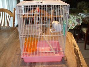 Petite cage à oiseau  450-994-2242