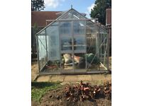 Green house 8ft by 8ft
