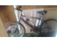 Electric bike ebike 800wat 36volt