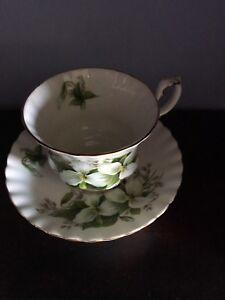 Royal Albert - Tea cup & saucer