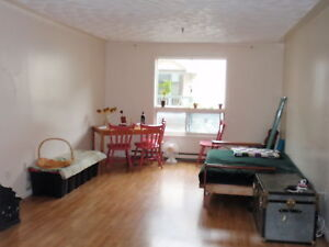 Central Location, Parking, Laundry,laminate