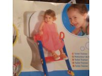 Toilet training ladder
