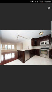 ☆■☆■☆PENTHOUSE UNIT SQUARE 1 MISSISSAUGHA☆■☆■☆647-569-4201
