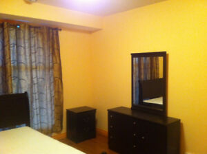 Furnished walk-out basement (above ground) for rent