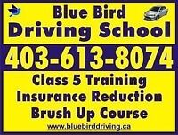 Driving school lessons(full course)➡425$